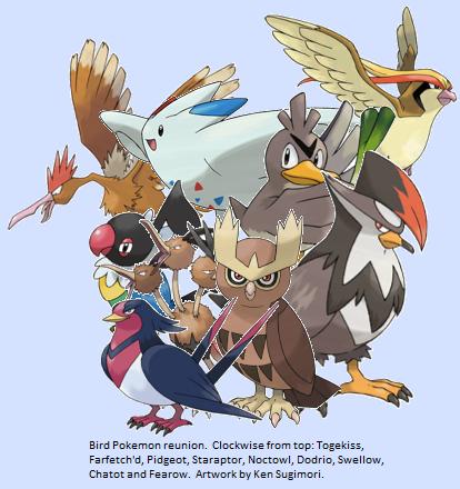a4208-birds