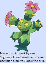 9e338-maractus